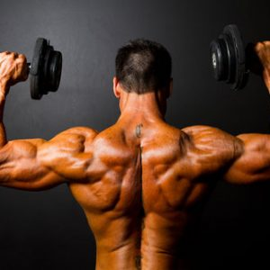 Shoulder-Workout-Plan